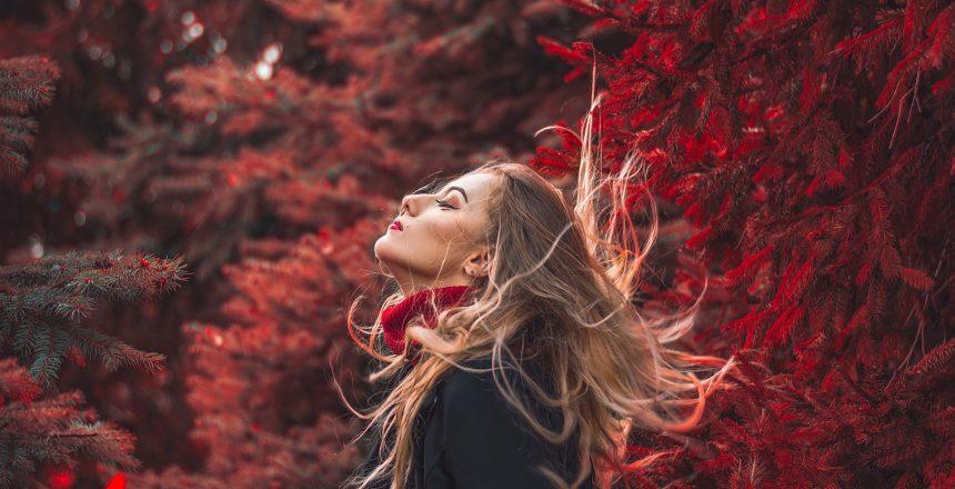 otoño caída pelo